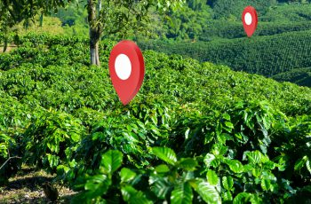 Information: develop online maps and provide information by QR Code